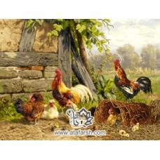 نخ و نقشه تابلو فرش مرغ و خروس مزرعه