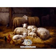 نخ و نقشه تابلو فرش گوسفندان